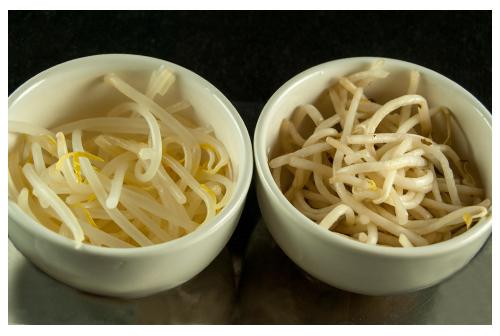 Conserva de brotes de soja